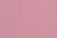 Ярко-розовый BD2T9FR002