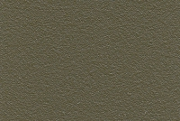 Vert 2100 Sable YW381I